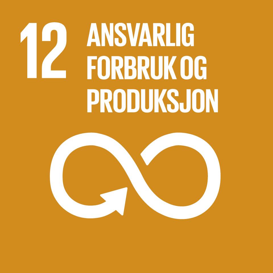 FNs bærekraftsmål nummer 12